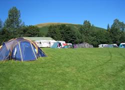 Cove Caravan and Camping Park
