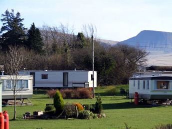 Black Mountain Caravan Park