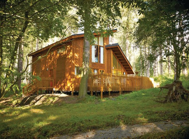 Blackwood Forest Lodges
